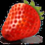 草莓文件加密器电脑版下载