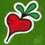 萝卜家园一键重装系统下载 v6.9.9.22 免费版