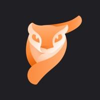 Enlight Pixaloop手机app下载
