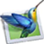 WnSoft PTE AV Studio Pro破解版 v10.0.13 绿色版