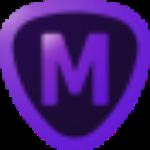TopazMaskAI破解版下载v1.3.3汉化