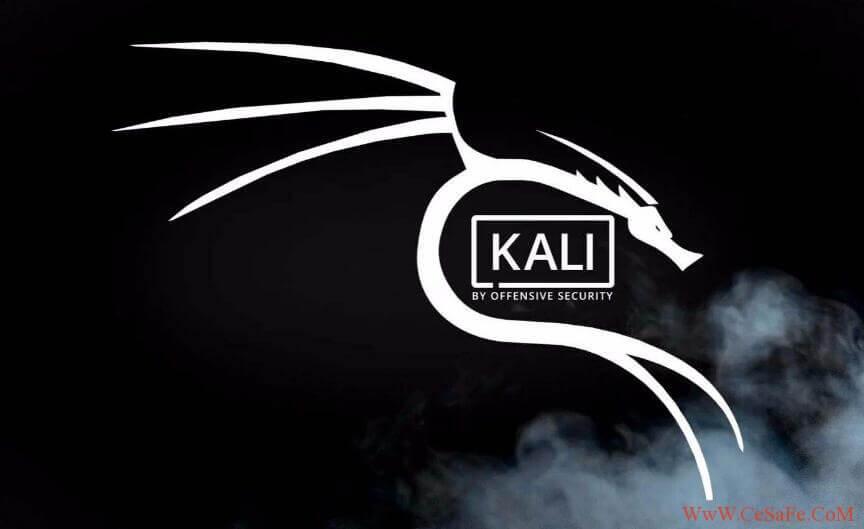 Kali 2018 最新更新源  最新软件源