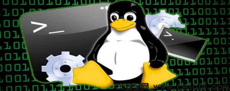 Cronjobs Linux提权