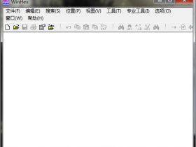 WinHexv19.9中文免费版