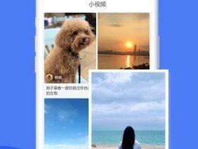 今日网事手机appv1.0安卓版
