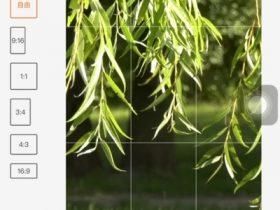 字幕王appv1.1.6安卓手机版